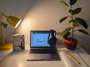Managing and Motivating Remote Workers